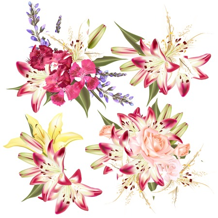 lily flowers collection: Collection of perfect vector flowers lily, roses and pink Illustration
