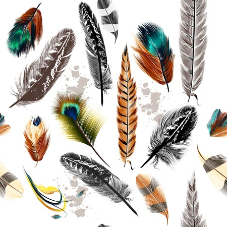 pluma: Vector de fondo sin fisuras con plumas de colores y grabados
