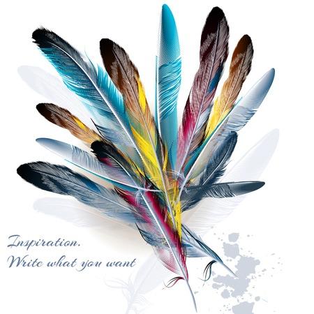 feather: Fondo del arte con plumas s�mbolo de la inspiraci�n y la escritura Vectores