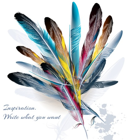 Art background with feathers symbol of inspiration and writing
