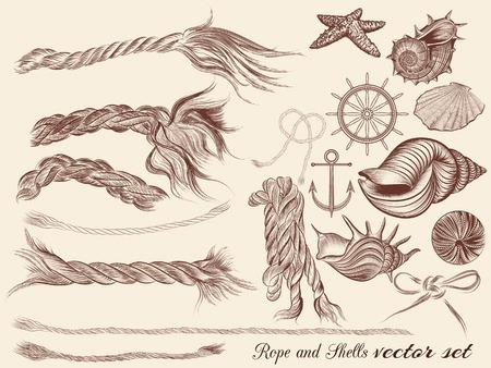 手のコレクション ビンテージ スタイルでの綱海の要素とシェルの描画