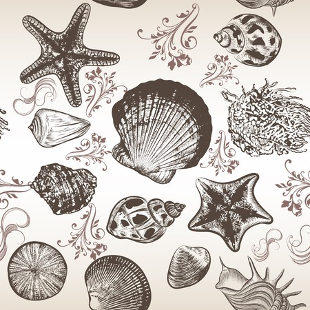 foliate: Seamless vector background with sea shells in engraved style