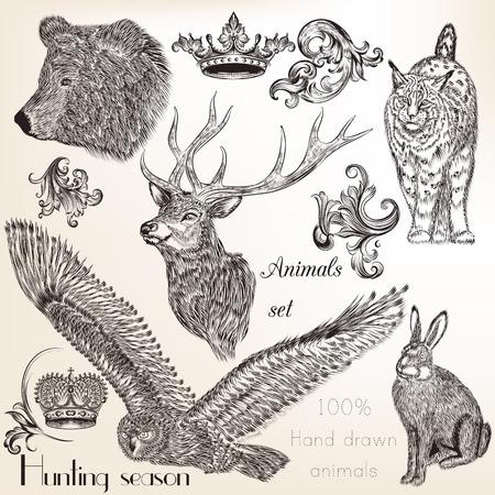 preto: Coleção mão do vetor tirada animais Ilustração