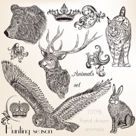 hunting season: Collection of vector hand drawn animals