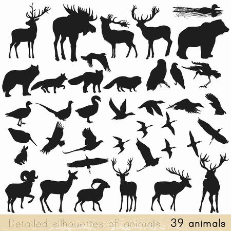 Коллекция векторных подробные силуэты лесных животных