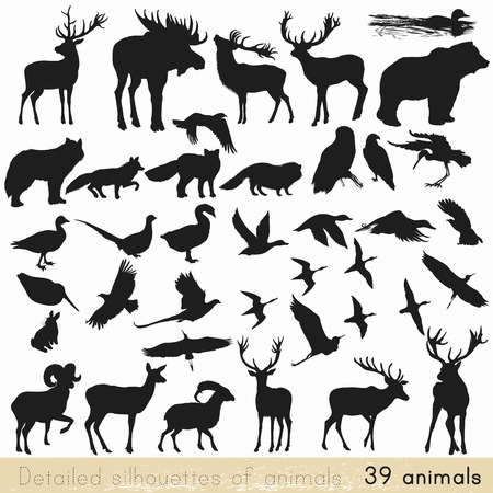 animals in the wild: Collection of vector detailed silhouettes of forest animals