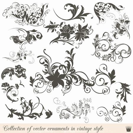 レトロなスタイルの装飾品をビンテージ ベクトルのコレクション 写真素材 - 44491999
