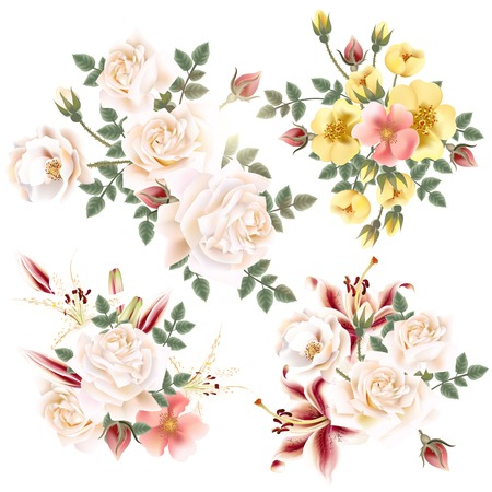 lily flowers set: Collection of realistic old-styled roses and lilies on white background
