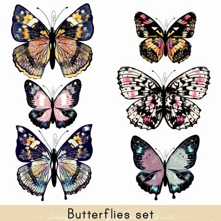 insecto: Colección de vectores mariposas de colores realistas para el diseño