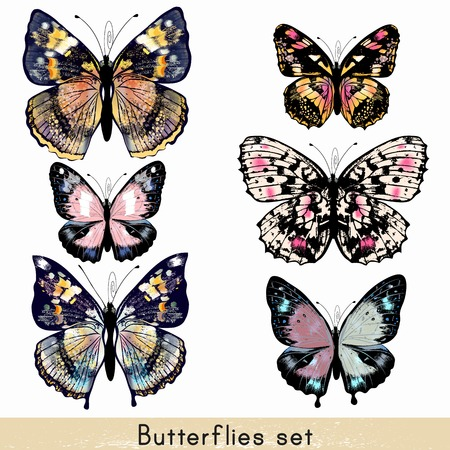 butterflies: Collection of vector realistic colorful butterflies for design