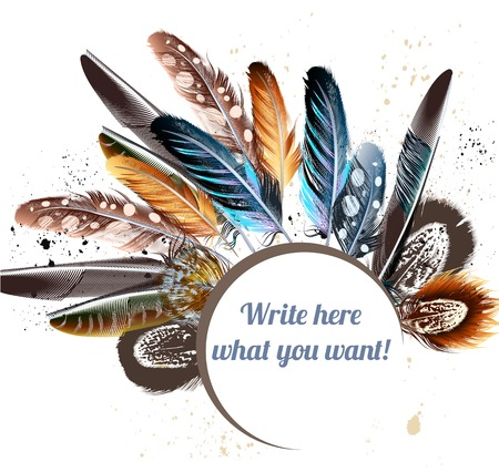 Beautiful vector colorful feathers and banner for text. Realistic feathers for your design Vettoriali