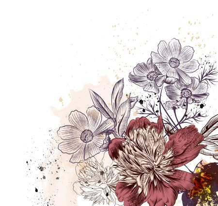 cosmos: Floral illustration with peony and cosmos  flowers Illustration