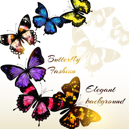 fashion design: Fashion background with beautiful colorful butterflies for design