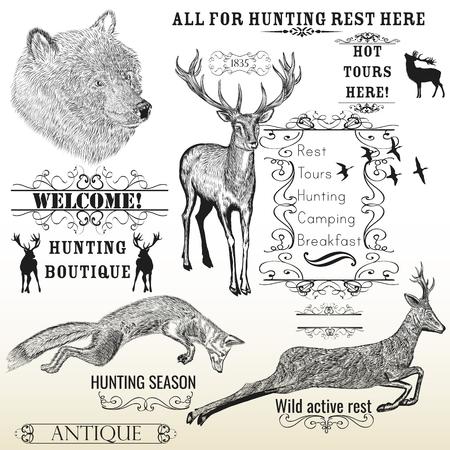 zorro: Vector conjunto de animales dibujados mano grabado ciervo, el oso, el zorro y marcos caligráficos todos para la caza y el diseño de descanso activo Vectores