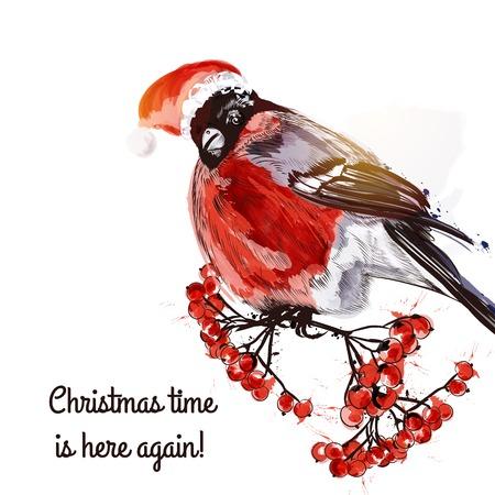 bullfinch: Christmas greeting card with bullfinch and rowan Illustration