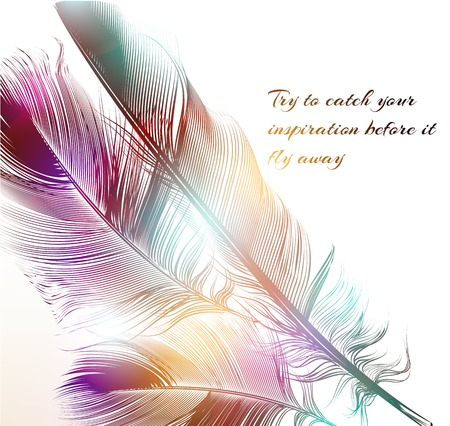 catch: An original vector illustration with engraved feathers conceptual background try to catch your inspiration before it fly away Illustration