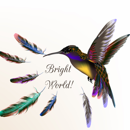 Beautiful vector illustration with hummingbird and colorful feathers Conceptual back meaning bright world
