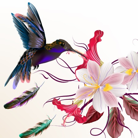 Beautiful vector illustration with hummingbirds hyacinth and hibiscus flowers Illustration