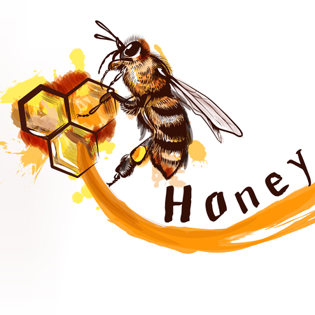 honey comb: Illustration hand painted detailed bee sitting on a comb fully of honey natural  product