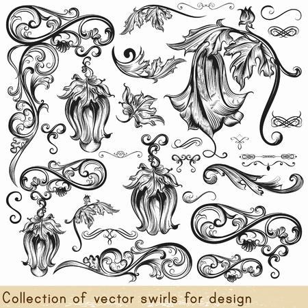 bordure de page: Collection de vecteur éléments calligraphiques et fioritures