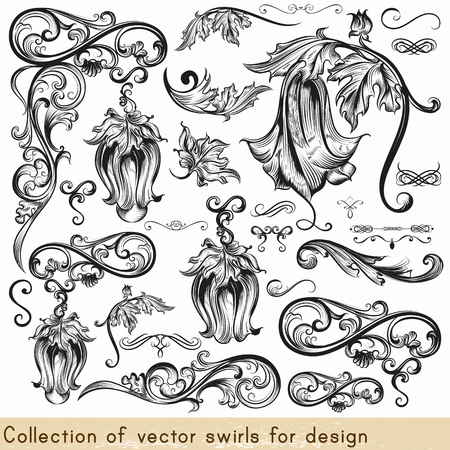 calligraphic: Collection of vector calligraphic elements and flourishes