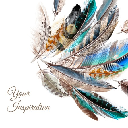 Fashion background with blue white and brown  feathers in realistic style symbol of inspiration Иллюстрация