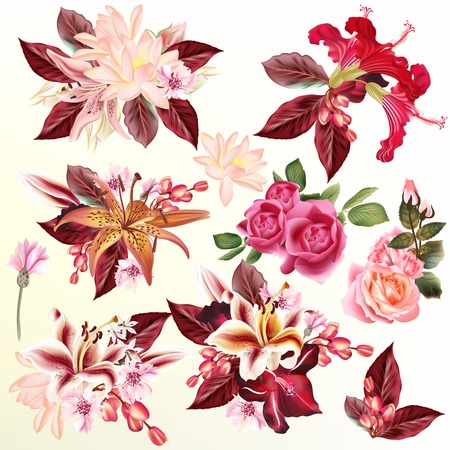 flower designs: Collection or set or realistic flowers lily roses lotus hibiscus for design