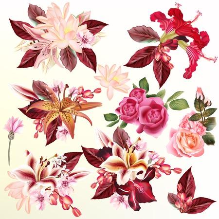 Fleures: Collection ou un ensemble ou des fleurs réalistes roses lys hibiscus de lotus pour la conception
