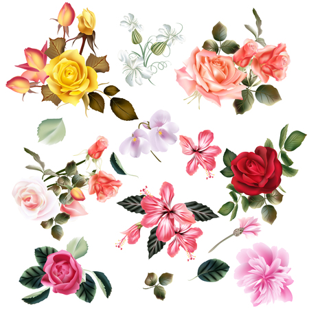 Big set of realistic vector flowers for design Vettoriali