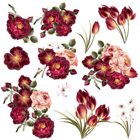 big: Gran colección o conjunto de flores vector realista para el diseño