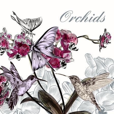Mooie achtergrond met bloemen orchidee kolibries en vlinders in aquarel stijl