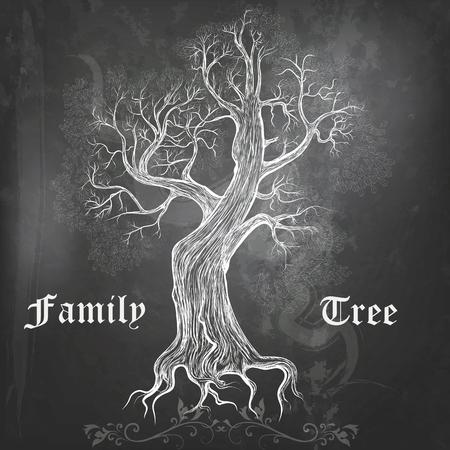 Fondo de la pizarra con el árbol de familia del roble vector dibujado a mano