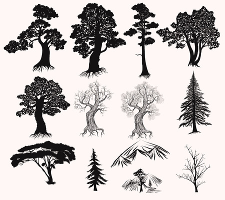 roble arbol: Colección o conjunto de árboles dibujados a mano Siluetas de árbol de pino roble y otra de piel