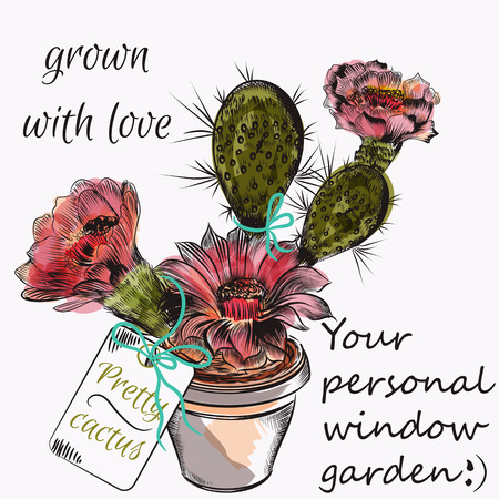 cacti: Funny pretty cactus flower in drawn engraved and watercolor style garden grown with love