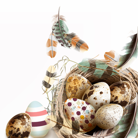 Easter vector background with realistic bird nest eggs and beautiful feathers for design in pastel soft colors Ilustração