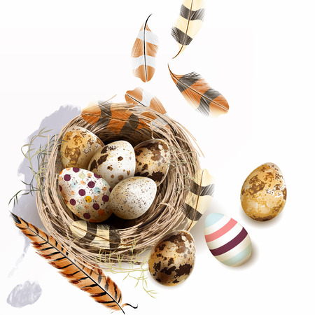 Easter vector background with realistic bird nest eggs and feathers for design