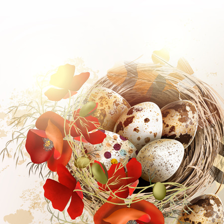 brown egg: Easter grunge vector background with poppy  flowers bird nest feathers in vintage style