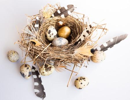 De samenstelling van Pasen met vogel nest eieren en veren op witte achtergrond met schone ruimte