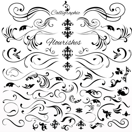 calligraphic: Collection or set of vintage styled calligraphic elements or flourishes