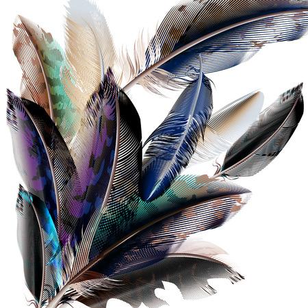 piuma bianca: Sfondo di moda vettore con le piume colorate in stile realistico