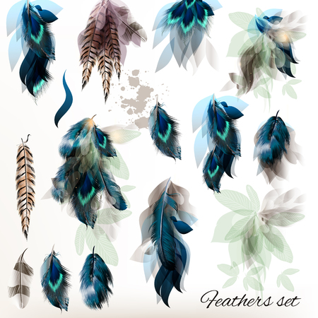 bird feathers: Big set of detailed bird feathers in realistic and floral  style