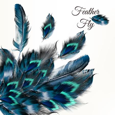 piuma bianca: moda sfondo vettoriale con piume blu in stile realistico per il design