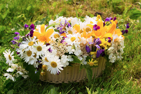 champs de fleurs: Outdoor still life with a basket full of field flowers chamomiles lily violets on a green grass in sunny summer day. Warm colors