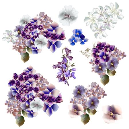 flores moradas: Una colección de flores realistas en el estilo de la acuarela, púrpura y azul