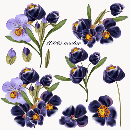 flores moradas: collection of purple flowers in vintage realistic style