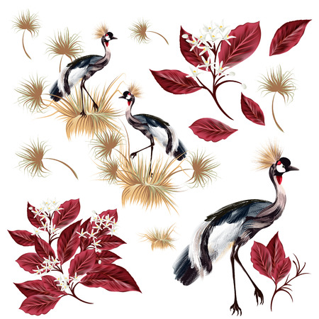A collection of realistic birds and leafs for design