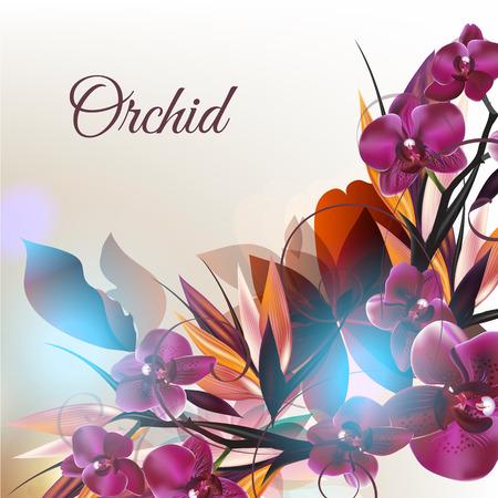 Fondo hermoso de la moda con plantas tropicales y flores de orquídeas