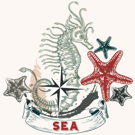 tripping: Cute vintage sea background with hand drawn seahorse and starfishes