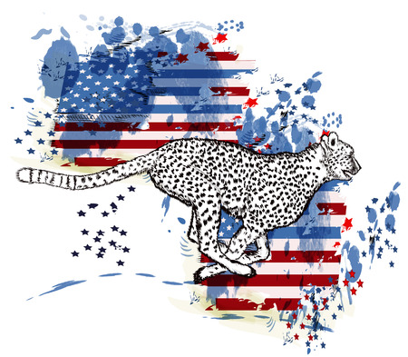 spot: Hand drawn cheetah and grunge American flag in ink spots Illustration