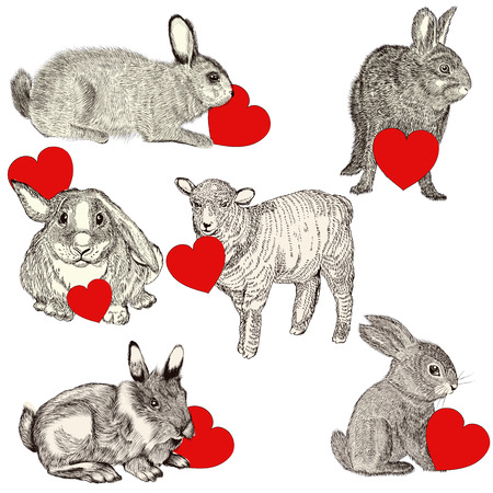 animals collection: Collection with cute animals holding red hearts. Happy Valentines day